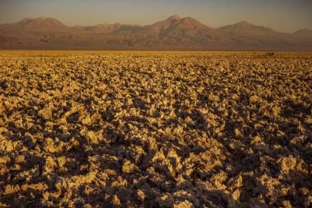 dirt clods Salar de Atacama