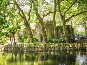 Pena Palace garden trees