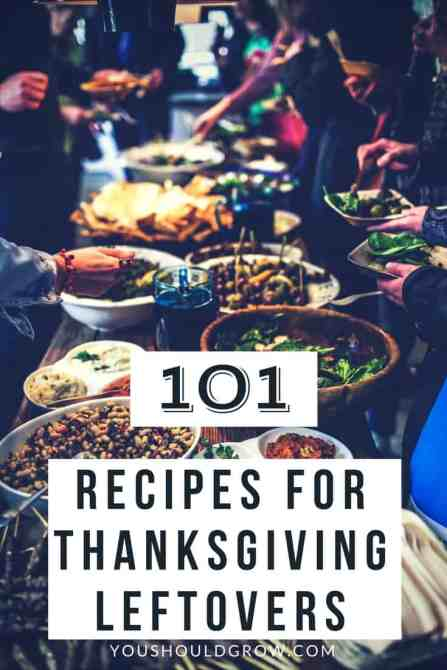 Looking for creative ways to use up Thanksgiving leftovers? Here are 101 recipes for breakfast, lunch, and dinner.