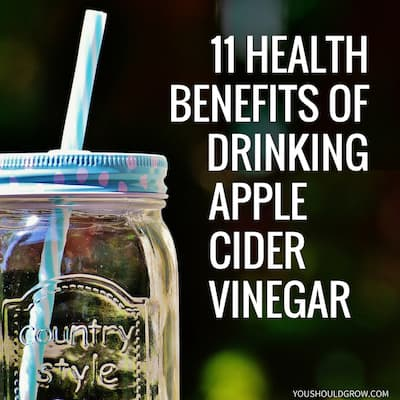 11 Health Benefits of Drinking Raw Apple Cider Vinegar