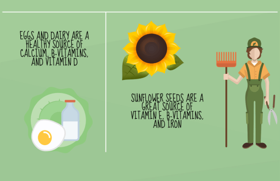 Eggs, dairy, and sunflower seeds are healthy sources of B-vitamins and minerals.