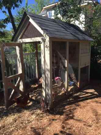 Super adorable chicken coop in a suburban backyard.