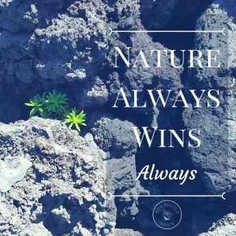 Nature always wins. Always.