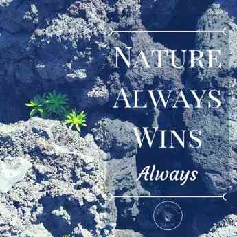 Nature always wins. Always.