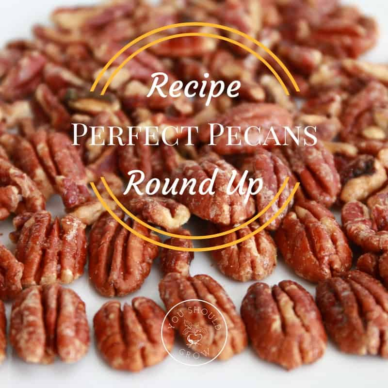 10 Ways To Eat Pecans: Pecan Recipe Roundup