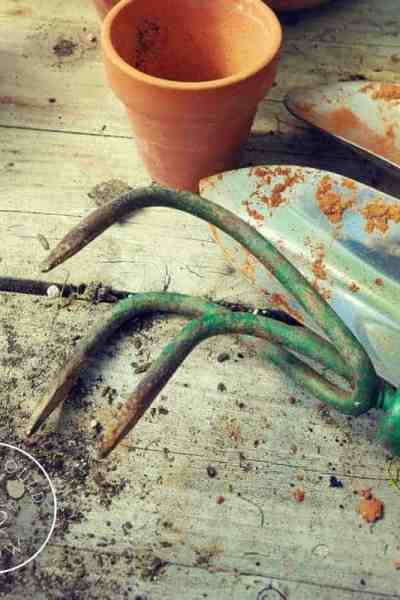 How to choose the right garden tools.