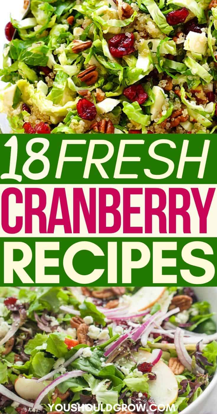 Cranberry Recipes - Recipes For Fresh Cranberries - Cooking With Cranberries - How To Cook Cranberries- What To Do With Cranberries - Ways To Use Up Craberries - Cranberry Sauce - Cranberry Relish - Cranberry Dessert - Savory Cranberry Recipes - Thanksgiving Cranberry Recipes - Christmas Cranberry Recipes - Cranberry Salad - Cranberry Bread - Cranberry Appetizer - Cranberry Dinner Dishes