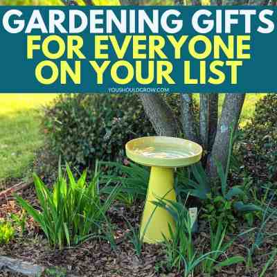 Gifts For Gardeners: Ideas For Everyone On Your List