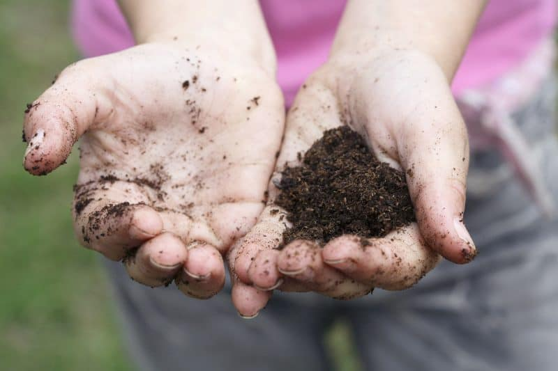 Gardening activities for preschoolers like two cupped hands filled with dirt.