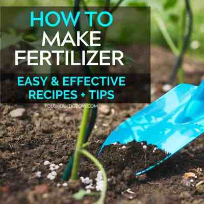 how to make fertilizer easy and effective recipes + tips