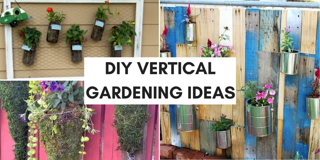 collage of plants growing vertically. text: diy vertical gardening ideas