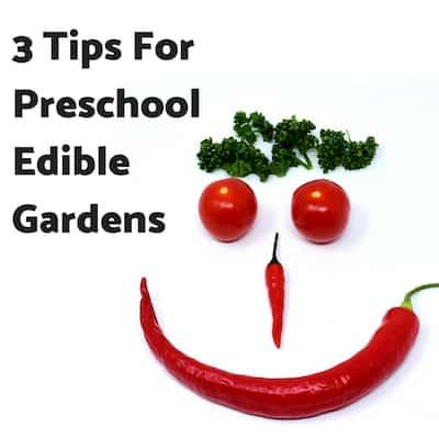3 Tips For Preschool Edible Gardens