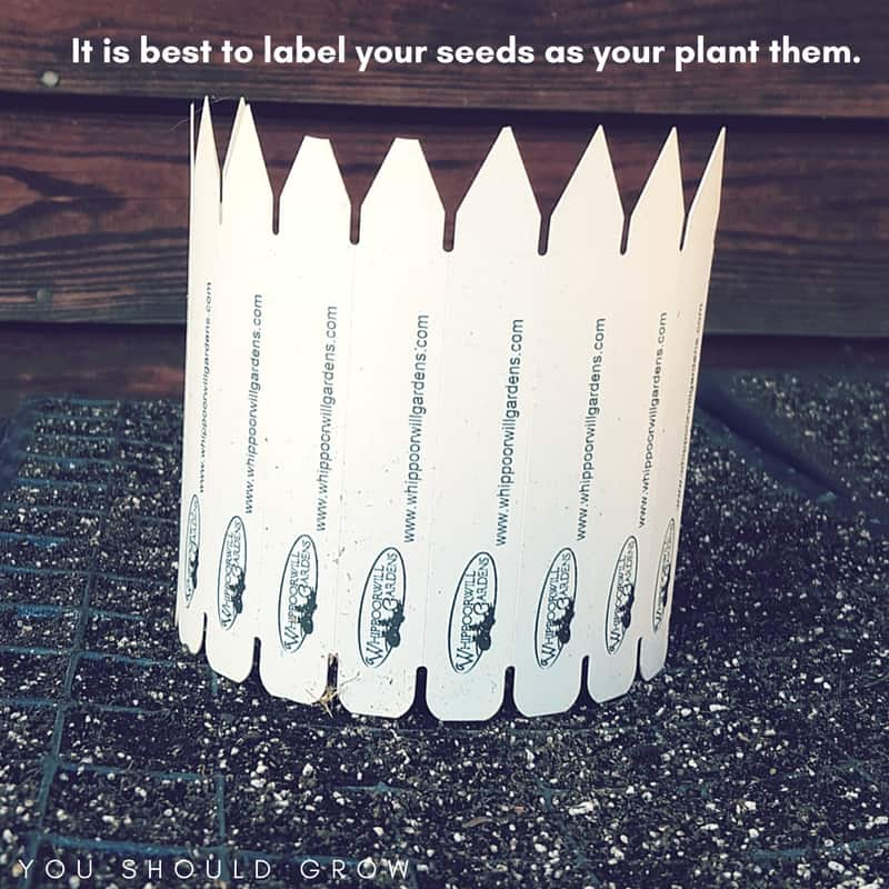 Always label your seeds as your plant them.