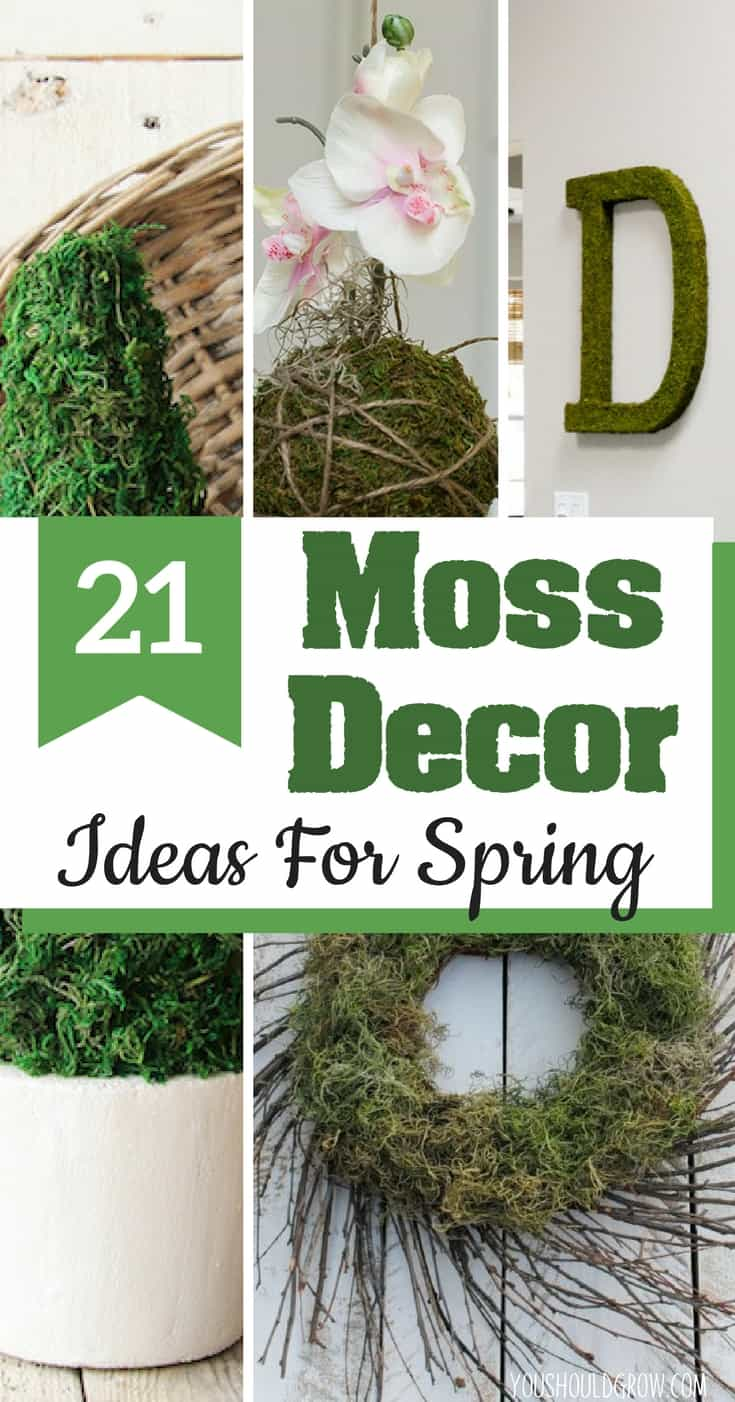 Moss Decor Ideas: From early blooming flowers to Easter and Saint Patrick's Day, there's tons of inspiration for decorating in the spring. Enjoy the fresh lookofmoss decor with these ideas.Farmhouse Style | Spring Decorations | DIY
