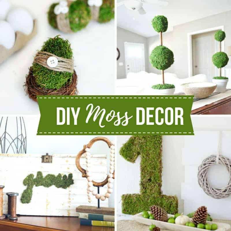 Colorful Rooms Moss: 20+ DIY Moss Decor Ideas For Spring