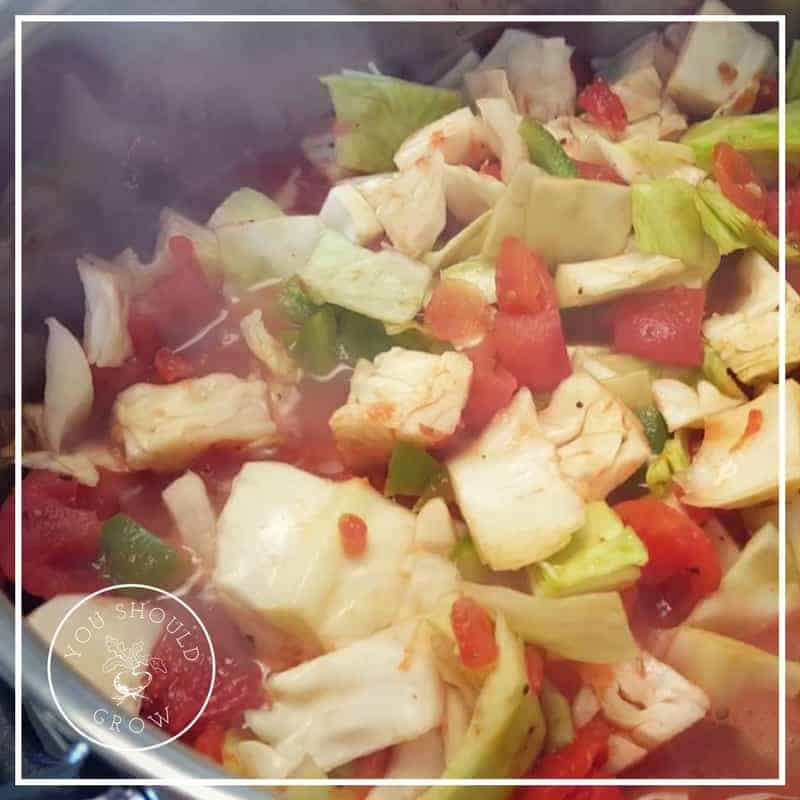Florida Salad – A Delicious Cabbage Soup