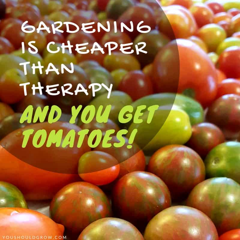 Gardening is cheaper than therapy, and you get tomatoes. Lots of tomatoes!