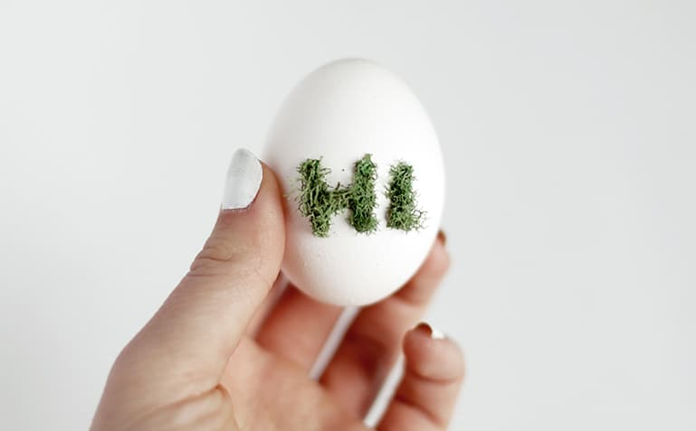 Moss accented eggs