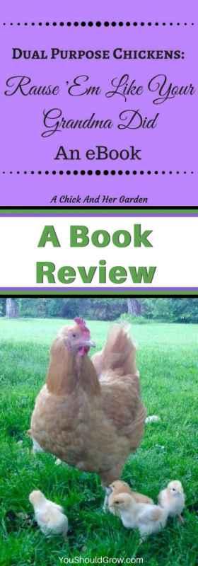 Dual purpose chickens: raise 'em like your grandma did. Book review