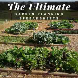 The Ultimate Garden Planning Spreadsheets