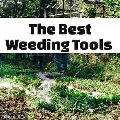 Best weeding tools - long handled weeding tools make the hard work of pulling weeds easier.
