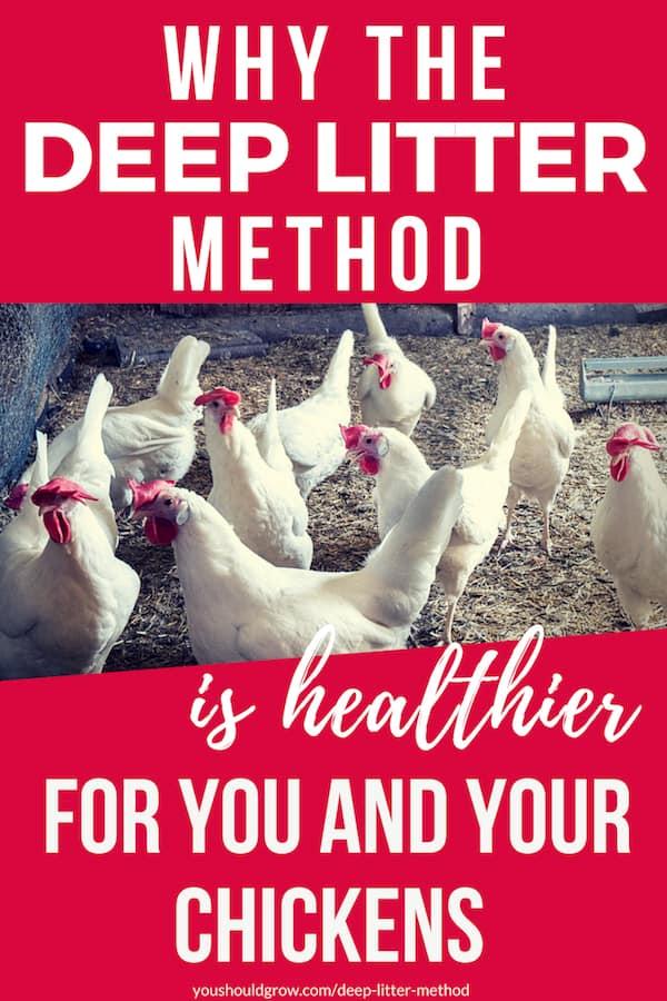 deep litter method for chicken coops2