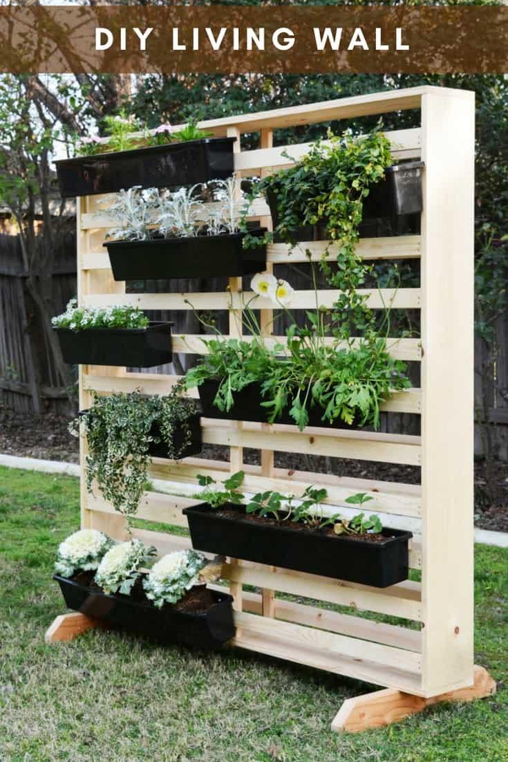 diy vertical garden the living wall