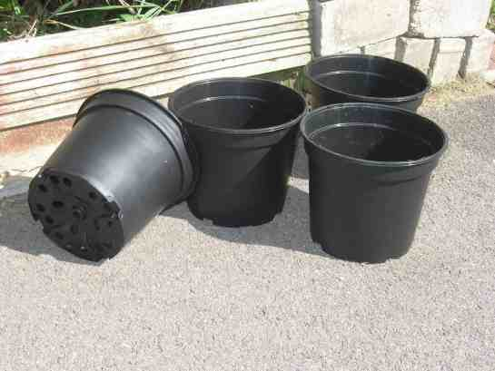 When you grow vegetables in containers, you must make sure your containers have drainage holes.