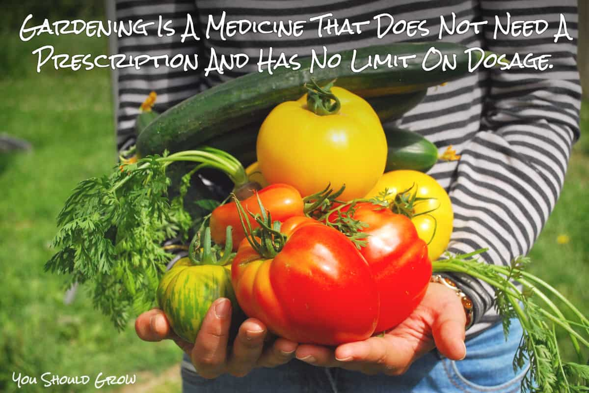 Gardening is a medicine that does not require a prescription and does not have a limit on dosage. Gardening quote.