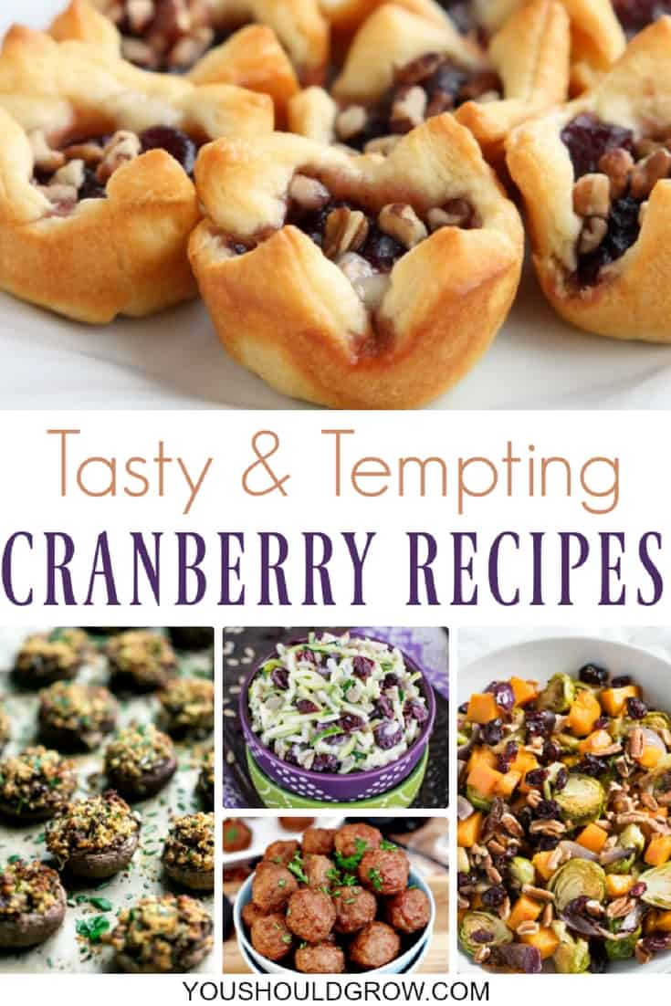 The season simply isn't complete without some holiday cranberry recipes, and these ideas go beyond the classic cranberry sauce to make your guests fall in love with the many cranberry flavors.