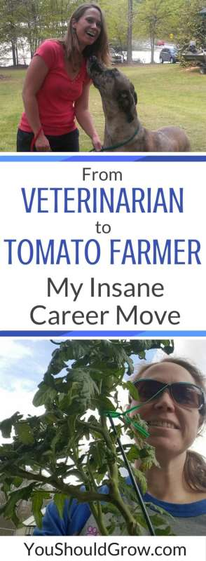 Change is inevitable. How I reacted when I lost my job. From veterinarian to tomato farmer: my insane career move.