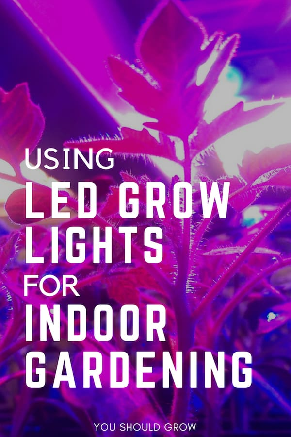 full spectrum led grow lights can be used for indoor gardening. Learn everything you need to know to make a smart purchase.
