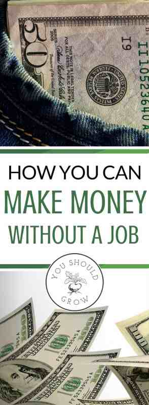 When I was laid off at work, I could have started looking for a new job. But it would have meant that I had a longer commute and additional daycare expenses. So I started working on my online business to make an income. Now I have a solid plan to make good money without a job while working from home and living a homestead life.