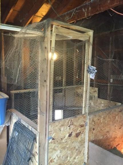simple chicken coop idea