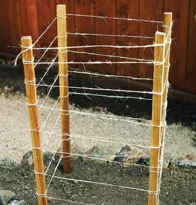 stake and twine tomato cage