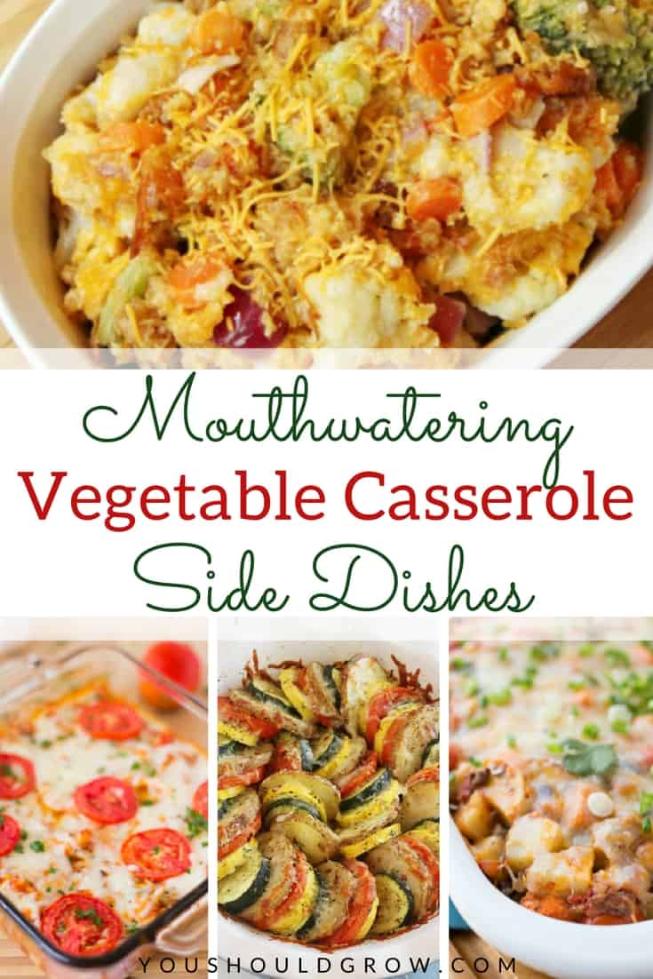 Incorporate lots of veggies into any meal with these casserole side dishes. These vegetable casseroles are perfect for small family meals as well as large family gatherings. After all, food this good tastes even better when shared with the ones you love!