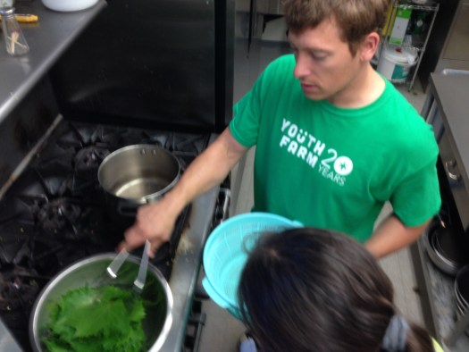 Boiling our grape leaves
