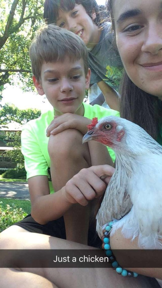 Oh you know, just a chicken.