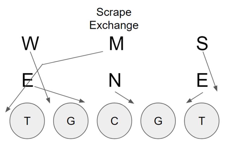 Scrape exchange 3-3 stack defense