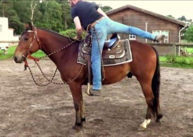 صورة لفارس يمتطي حصانه
