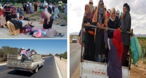 صور النساء الفلاحات التونسيات