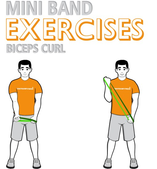 Mini Band Biceps Curl