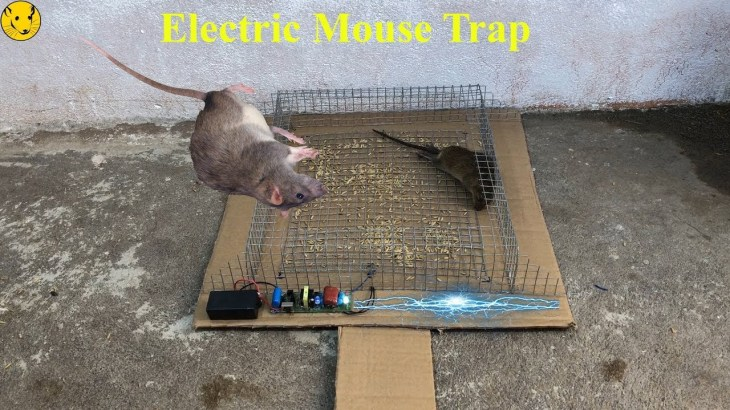Electric Mouse Trap/Best Trap Homemade Work With Battery 12V Easy saving a Mice/Mouse Reject