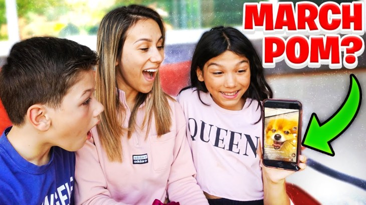 We Think We FOUND Our MISSING Puppy MARCH POM On TIKTOK!!! **EMOTIONAL**
