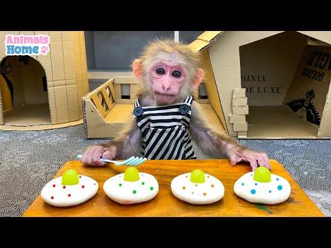 Chef BiBi make cakes for Ody cat