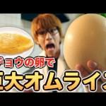 [はじめしゃちょー]【料理】ダチョウの卵で巨大オムライス作りたい!!!