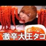 [takeyaki翔]タコを生きたまま激辛ソースで食べてみたゾ!【ASMR風】