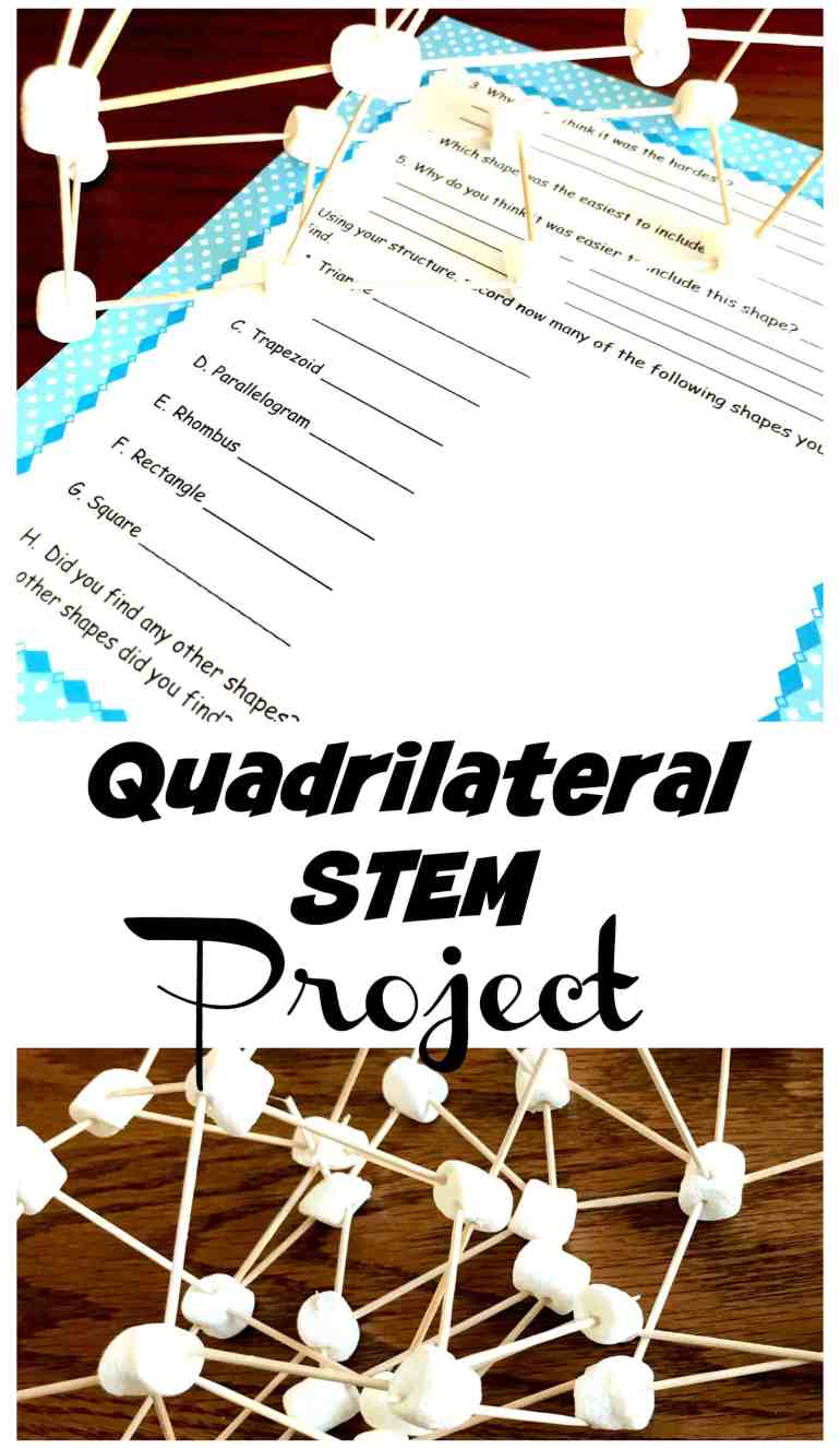 quadrilateral-STEM-project-pin Four Way Table Math Questions on for grade 7, for year 5, for 5th graders,