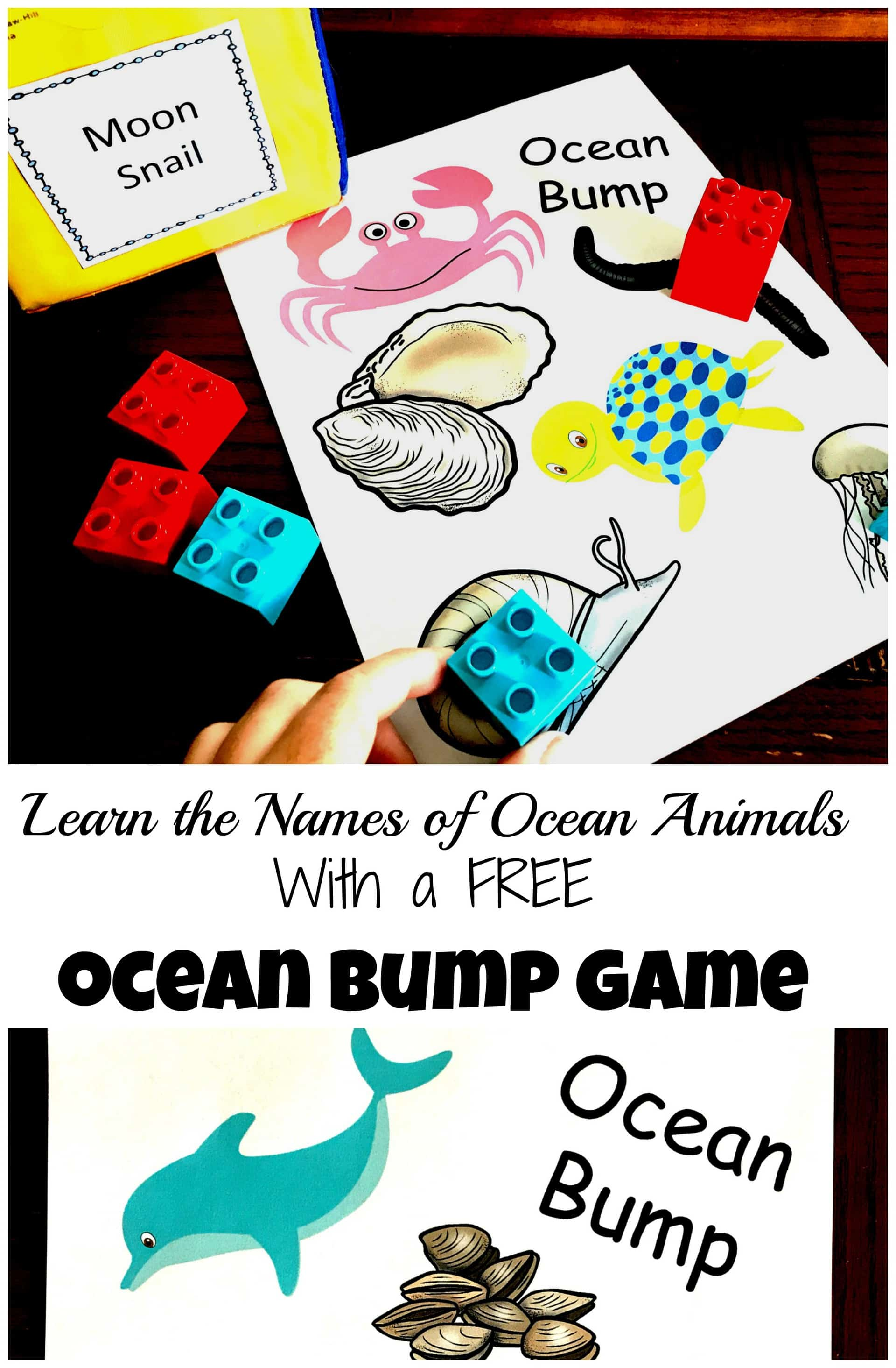 Image of: Kindergarten Bump Game For Ocean Animals Youve Got This Math Grab This Free Bump Game To Learn The Names Of Ocean Animals