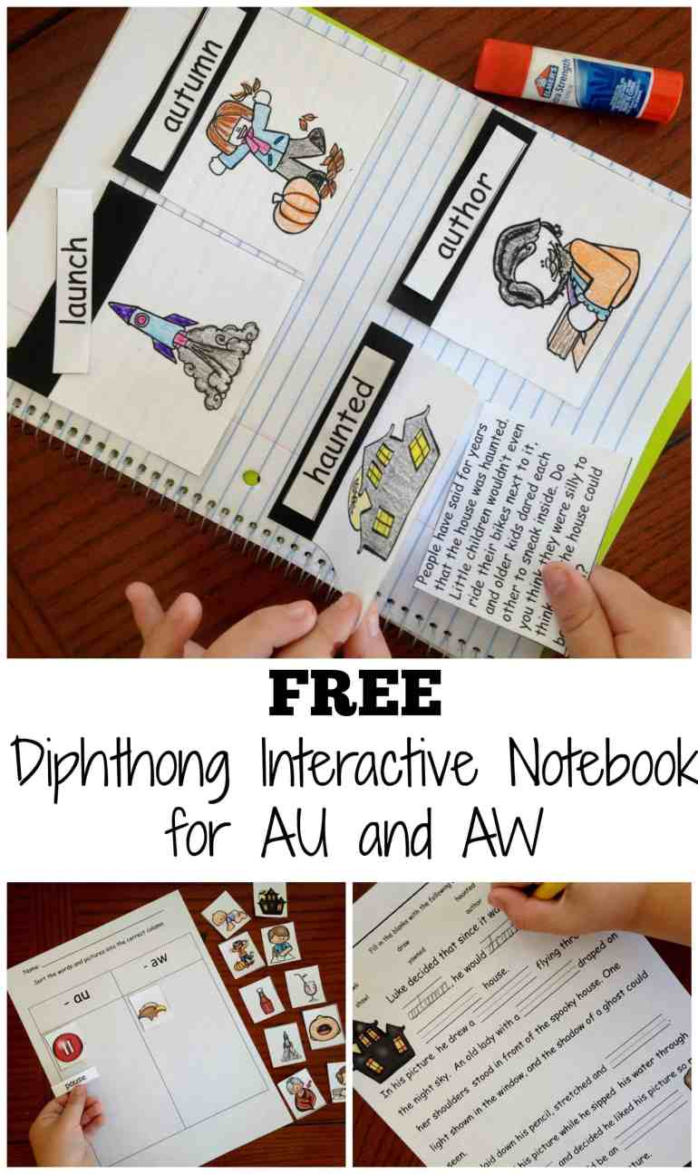 diphthong-interactive-notebook-pin